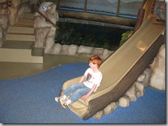 Sea-Life Aquarium Play Slide