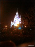Walt Disney World Castle - Taken with Palm Pre